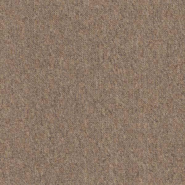GENOVA 5520